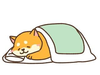 睡眠の役割
